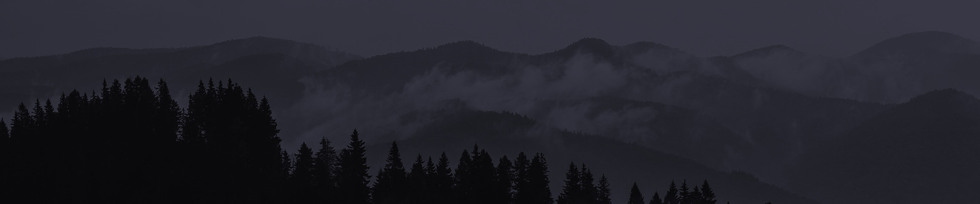 Clouds, Fog, Forest